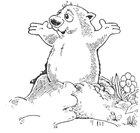 punxsutawney phil coloring book printable